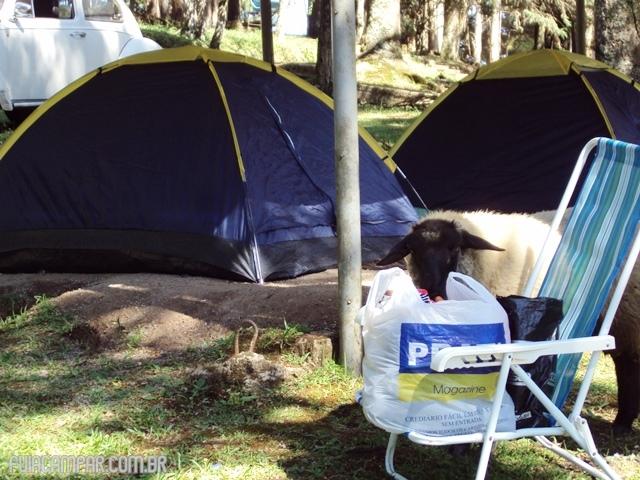 20 Dicas para acampar pela primeira vez(4)