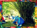 carnaval acampando