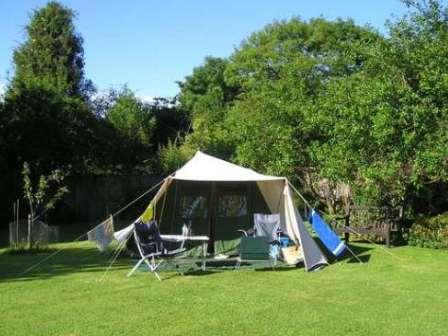 Read more about the article Que tal acampar no jardim?