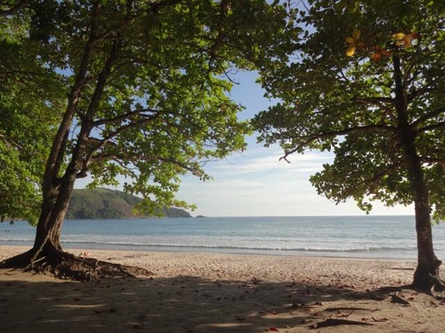 Praia do Sono, areia clara, mar azul e sombra de amendoeiras