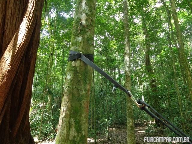 Usando o Fita fix para prender nas árvores